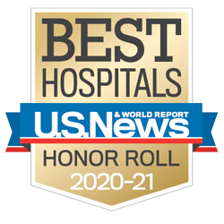 Best Hospitals U.S. News Honor Roll 2020-21 Icon
