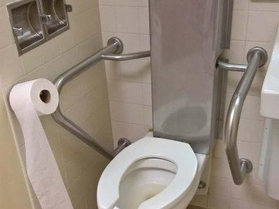 Bathroom tolite